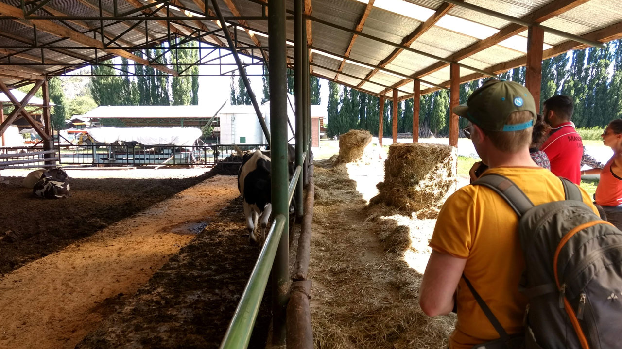 organic-farm-spanish-lessons